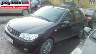 Купить Fiat Albea, 2008 года